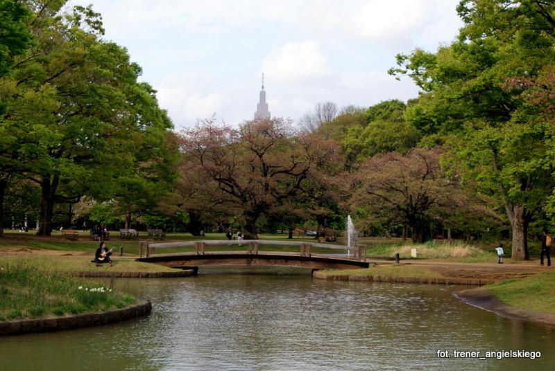 Park Yoyogi w Tokio